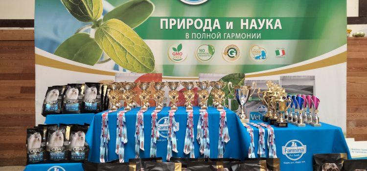 Итоги Чемпионата России по аджилити 2021